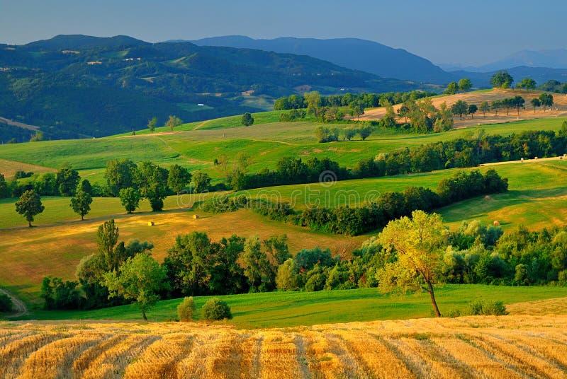 乡下意大利语 免版税库存照片