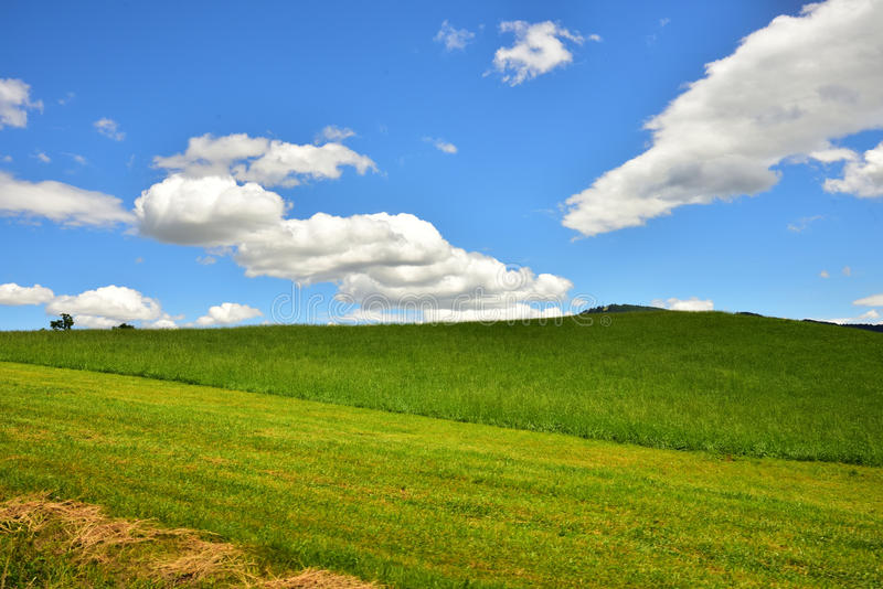 乡下的风景照片在奥地利 免版税库存图片