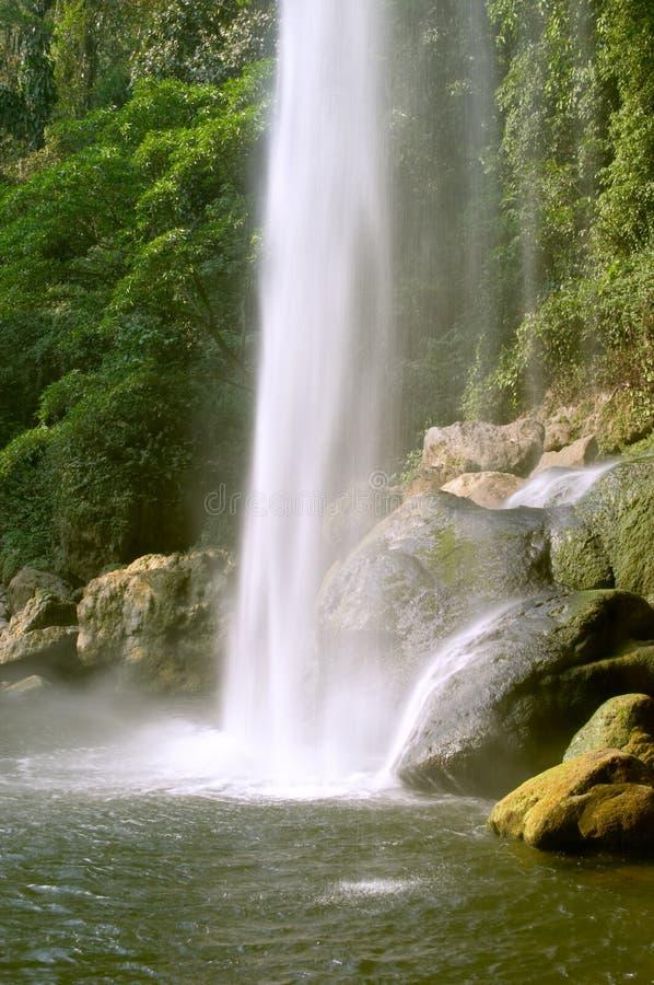 乡下纯粹瀑布 库存照片