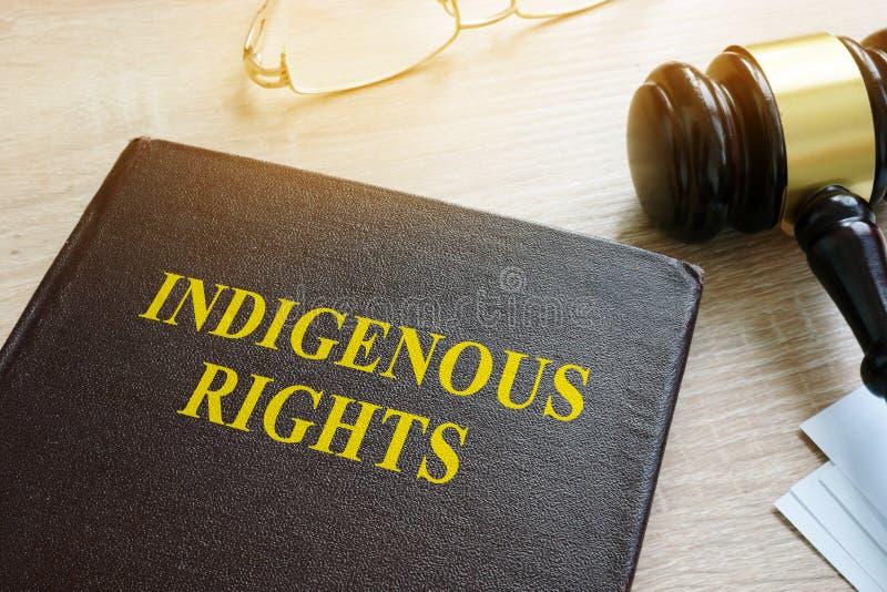 书关于土产权利法律 免版税库存图片