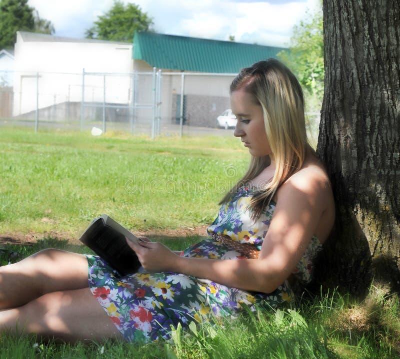 书女孩下读取结构树 库存图片