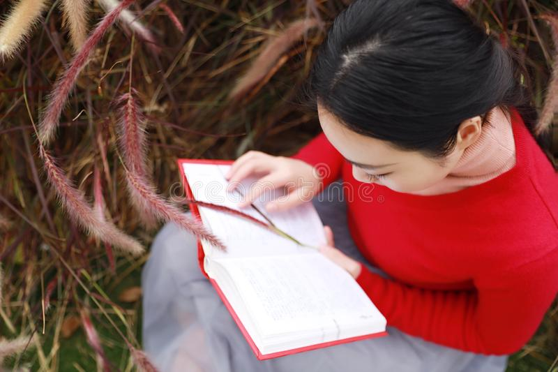 书女孩读取 有书的白肤金发的美丽的少妇坐草 室外 晴朗的日 免版税图库摄影