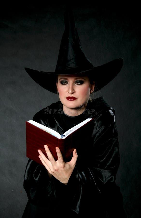 书巫婆 免版税库存图片
