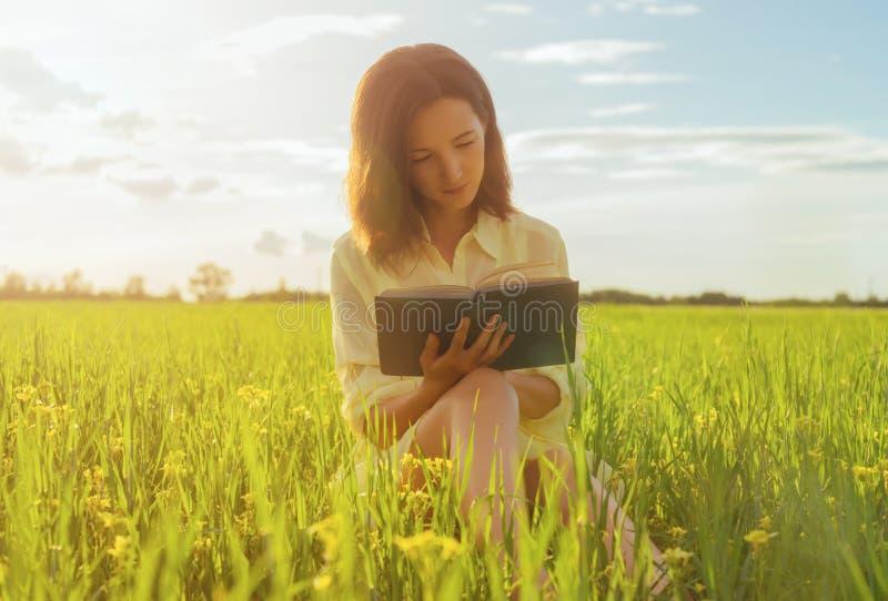 读书的妇女在夏天草甸 免版税库存照片