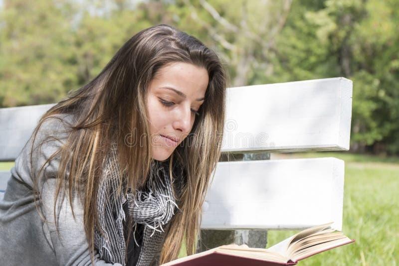 读书的少妇在公园长椅 库存照片