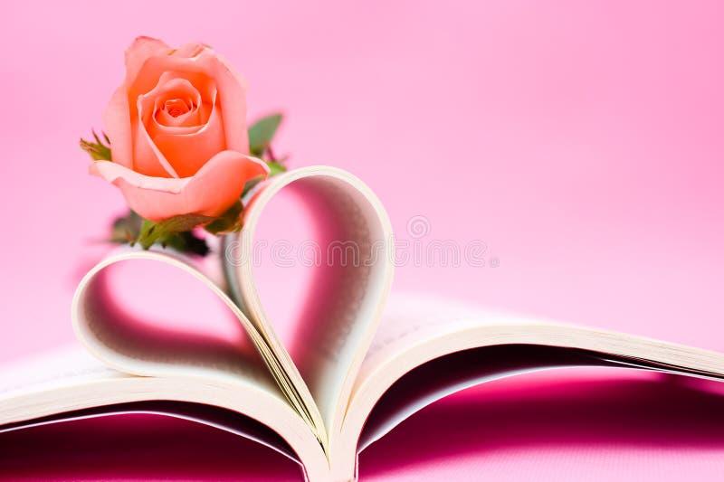 书被塑造的重点玫瑰 库存照片