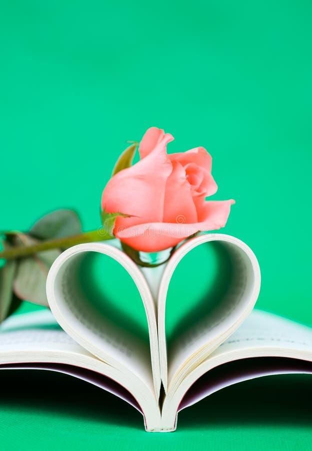 书被塑造的重点玫瑰 免版税库存照片