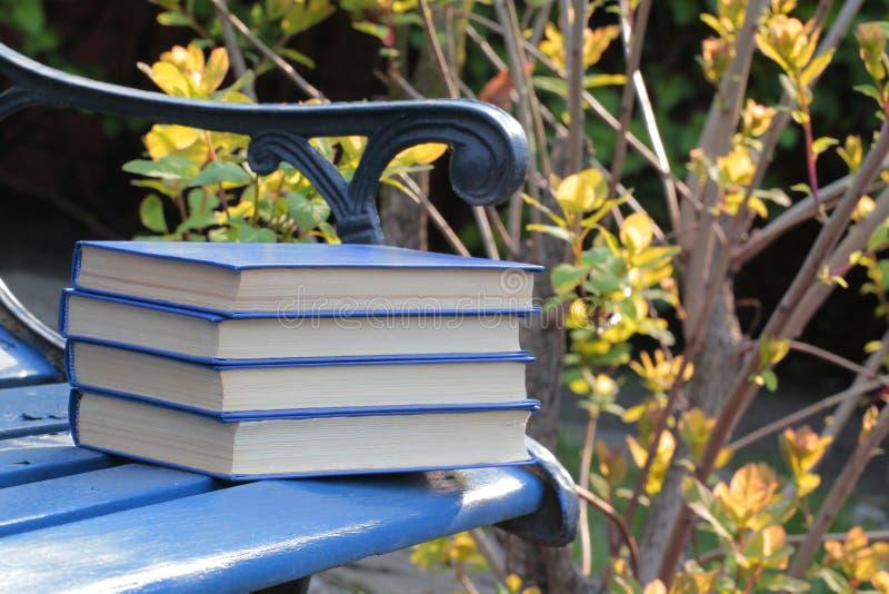 书长凳风树背景没人 免版税图库摄影