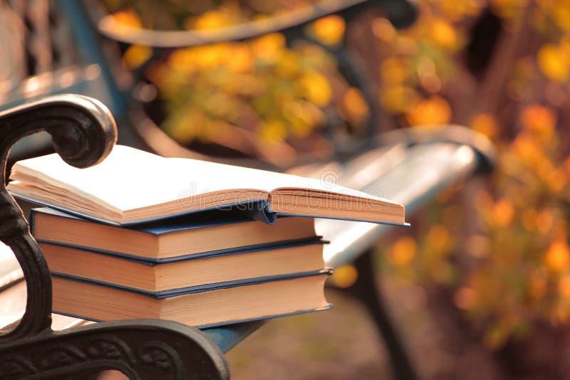 书长凳风树背景没人 免版税库存照片