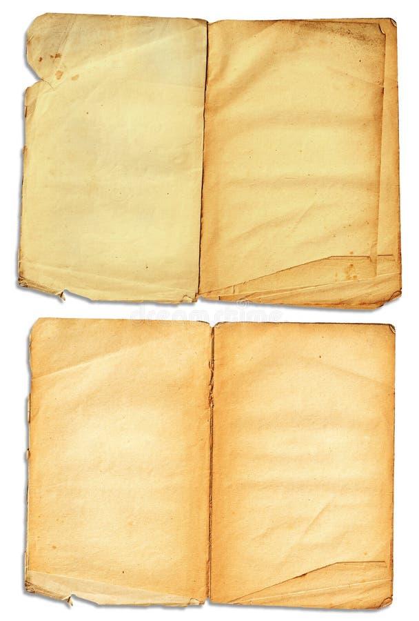 书grunge开放页 库存图片