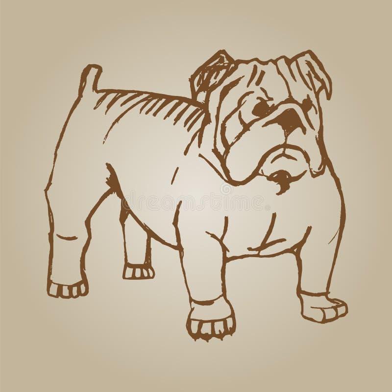 乱画幼小牛头犬图画在白色背景的 向量例证