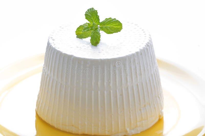 乳清干酪 库存图片