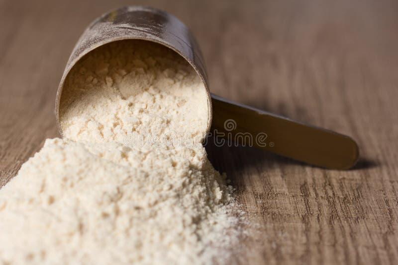 乳清蛋白 有香草粉末味道的被投下的瓢 木 免版税库存照片