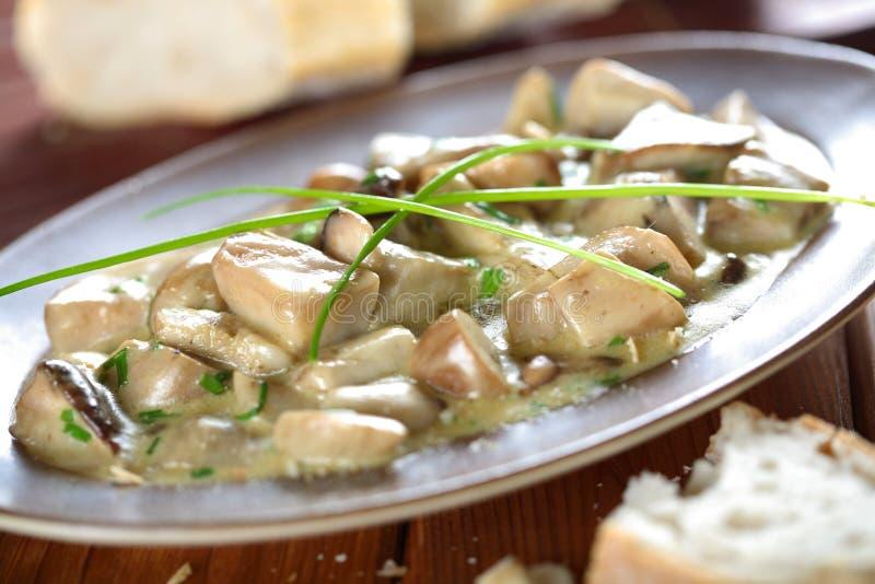 乳脂状的穿戴的蘑菇 库存图片