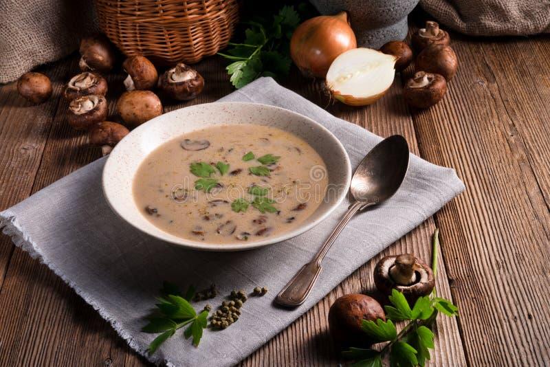 乳脂状的蘑菇汤 库存照片