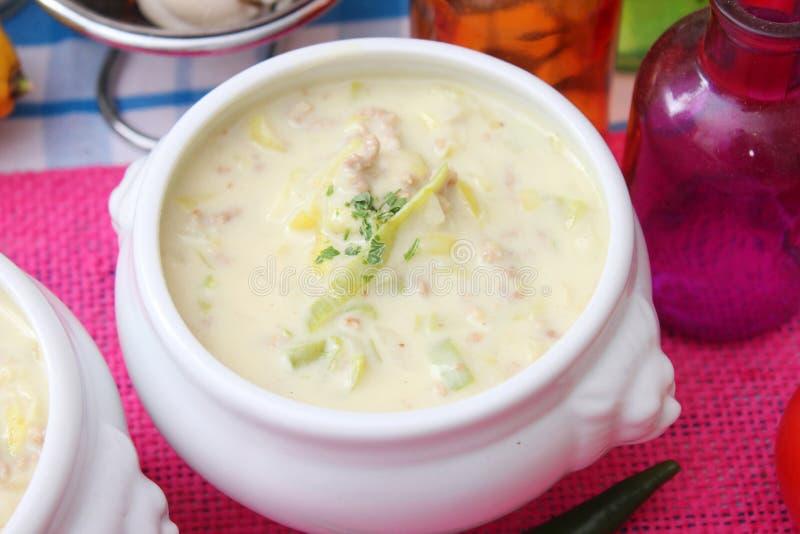 乳酪和韭葱汤  免版税库存照片