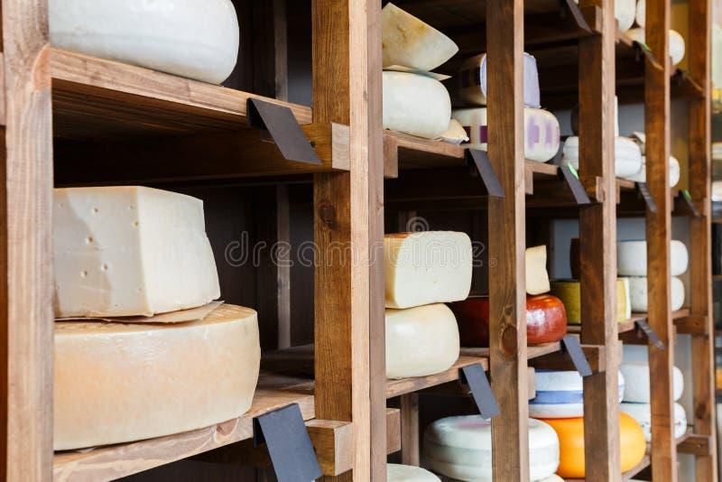乳酪商店架子,大乳酪分类 免版税库存图片