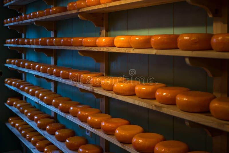 乳酪在阿姆斯特丹,荷兰 免版税图库摄影