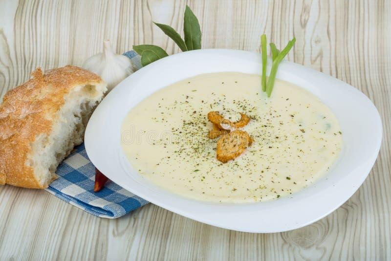 乳酪汤用油煎方型小面包片 免版税图库摄影