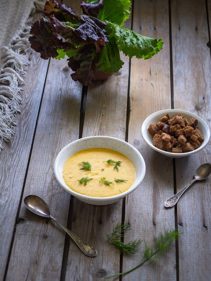乳酪汤纯汁浓汤用薄脆饼干和莳萝,黑面包,在一块陶瓷玻璃的莴苣薄脆饼干在一块小板材的在老委员会 免版税图库摄影
