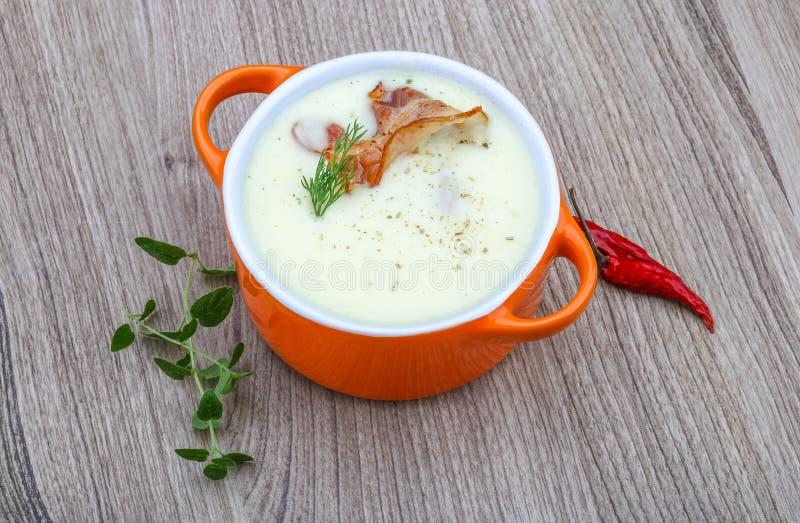 乳酪汤 库存图片