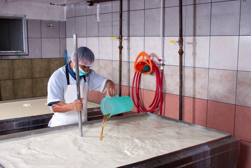 乳酪生产在工厂 免版税库存照片