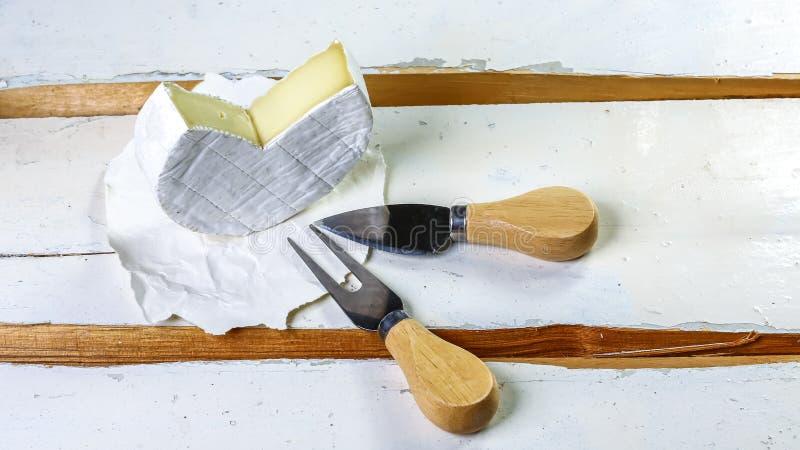 乳酪的咸味干乳酪类型 软制乳酪乳酪 E r 免版税图库摄影