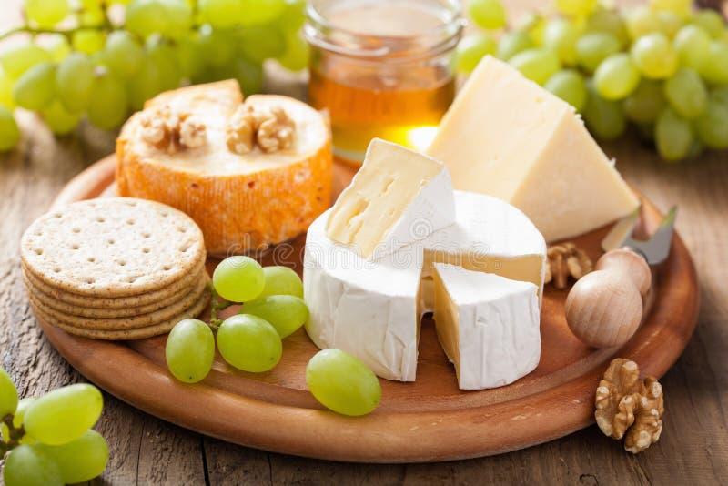 乳酪盘子用软制乳酪、切达乳酪、葡萄和蜂蜜 免版税库存照片