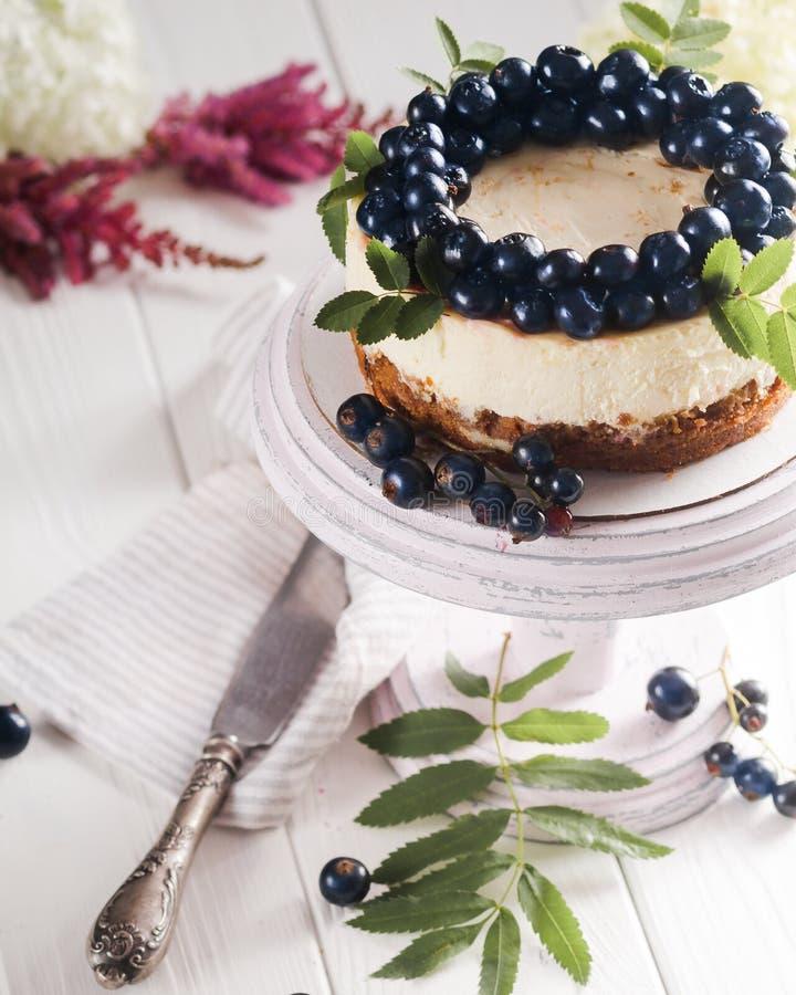 乳酪蛋糕用莓果 库存图片