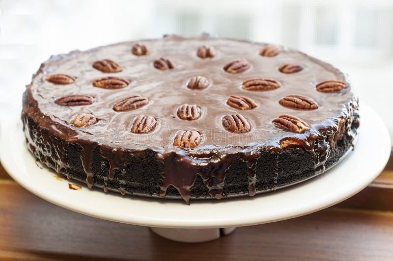 乳酪蛋糕用黑暗的巧克力 免版税库存图片