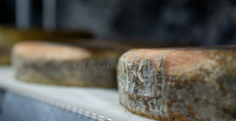 乳酪调味料  库存图片