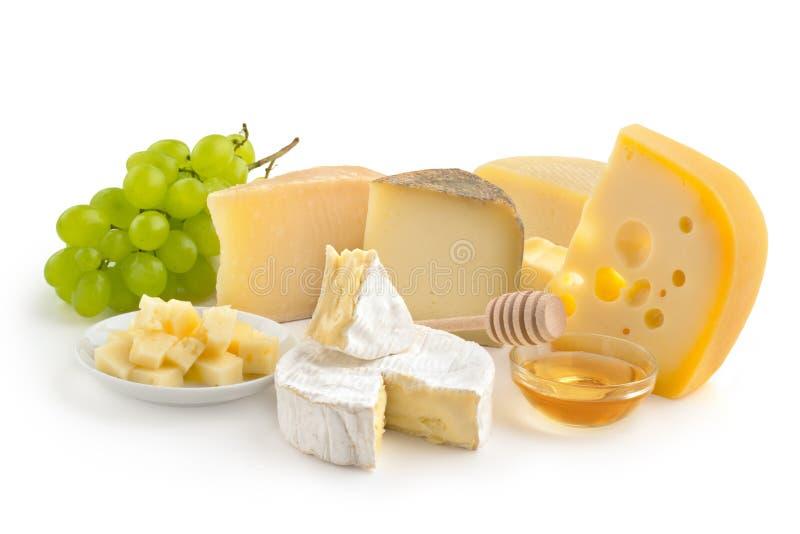 乳酪选择 库存照片