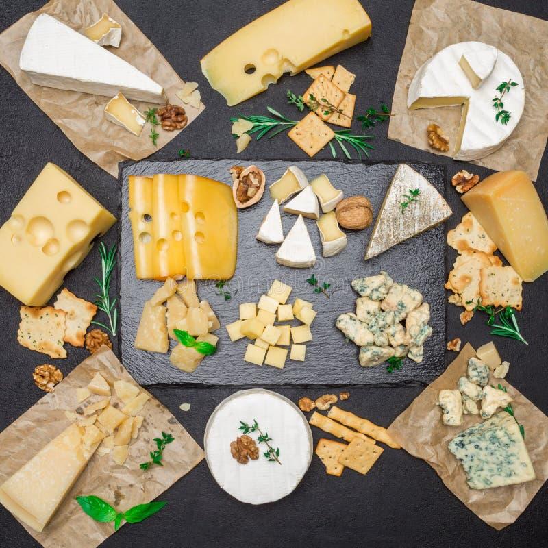 乳酪-咸味干乳酪、软制乳酪、羊乳干酪和切达乳酪的各种各样的类型在混凝土 免版税库存照片