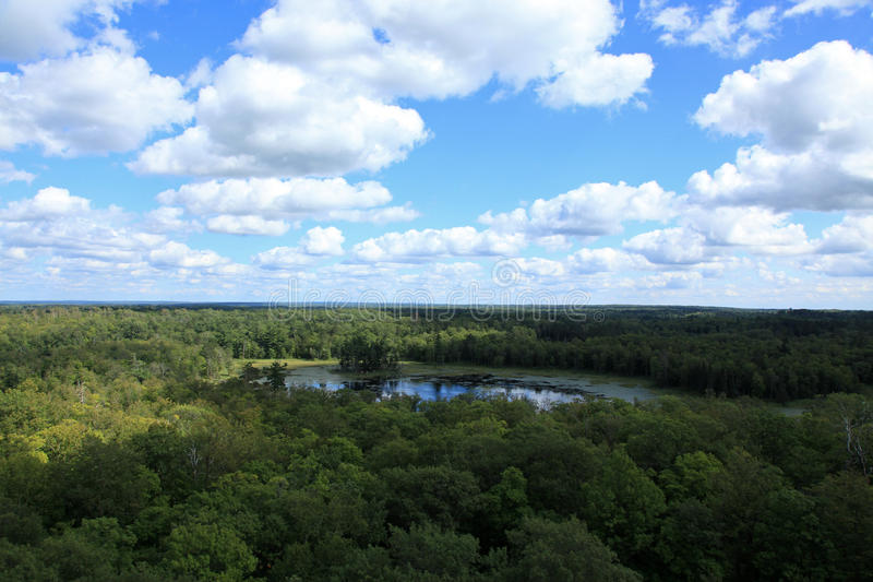从了望塔的看法在Itasca国家公园 免版税库存照片