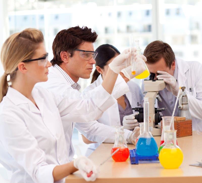 了解科学学员的实验 免版税库存照片