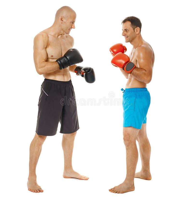 争吵在白色的Kickboxers 库存图片