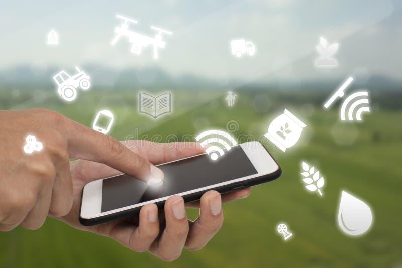 事农业概念,聪明种田,工业农业,农夫对控制,显示器,管理的用途技术互联网  免版税库存图片