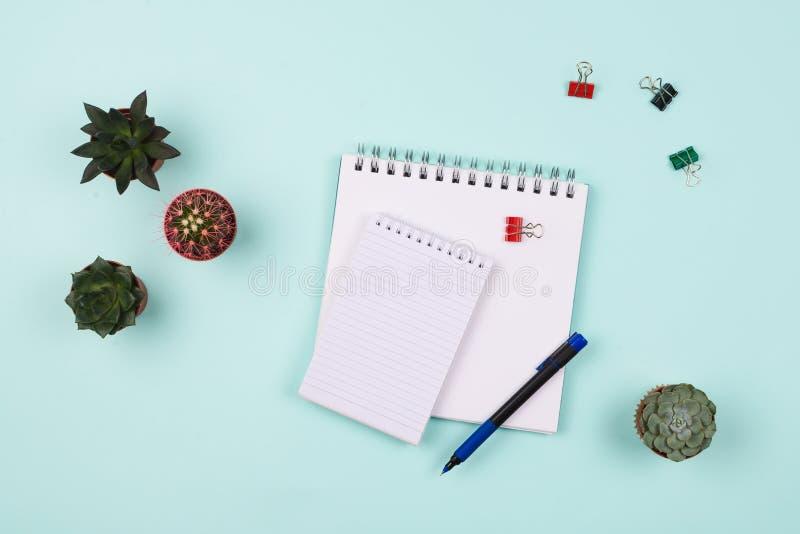 事务flatlay与有空白页的各种各样的笔记本、笔、多汁植物和仙人掌和夹子在桌上 免版税库存图片