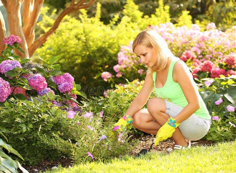 从事园艺 种植花的白肤金发的少妇在庭院里 免版税库存照片