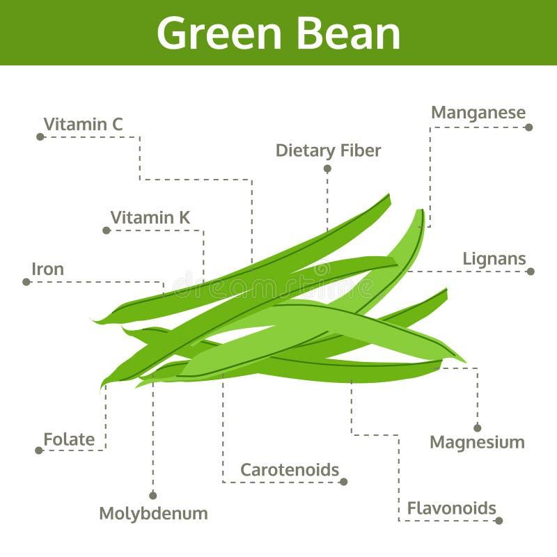 事实和保健福利,信息图表青豆营养素  皇族释放例证