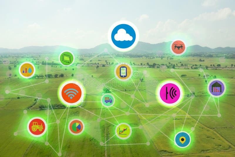事工业农业,聪明的种田的概念,在未来派icom的各种各样的农厂技术互联网在领域b 免版税库存图片