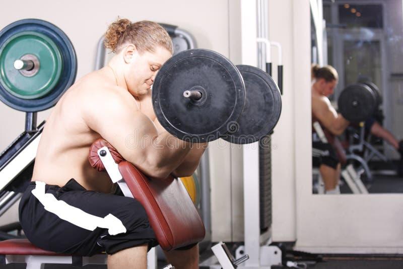 二头肌大量的培训重量 库存照片