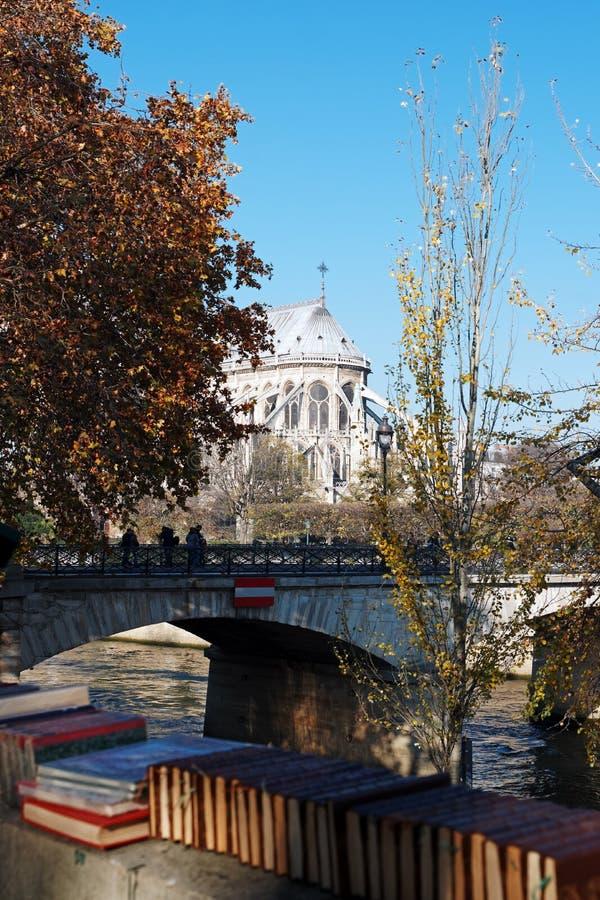 二手书商和Notre Dame大教堂 库存图片