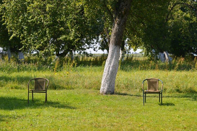 二把椅子在公园 免版税库存图片
