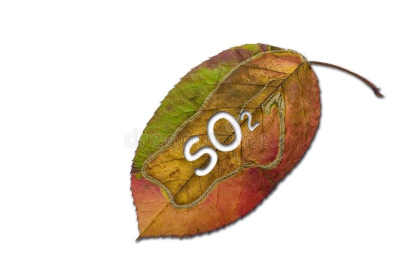 二氧化物硫磺 库存图片