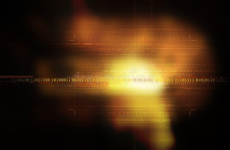 二进制代码