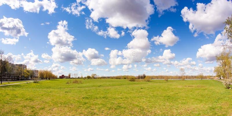 云下的春绿 库存照片