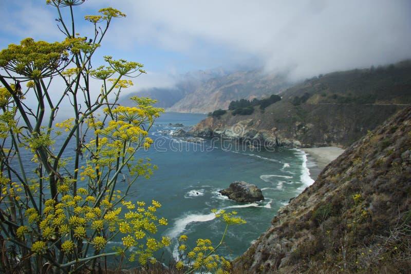 云彩在高速公路1海岸下降 免版税库存照片