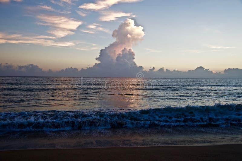 云彩松的塔在早晨天空的 库存图片