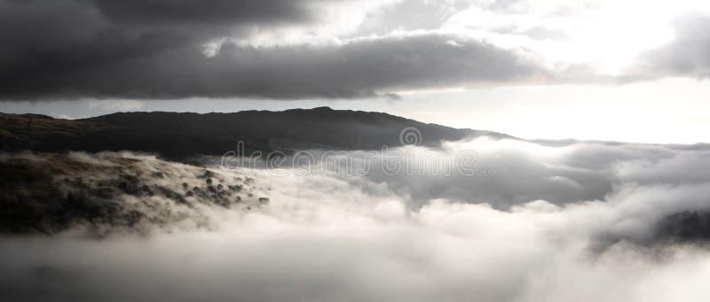 云彩现出轮廓结构树 图库摄影
